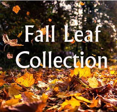 Fall Leaf Collection 2020