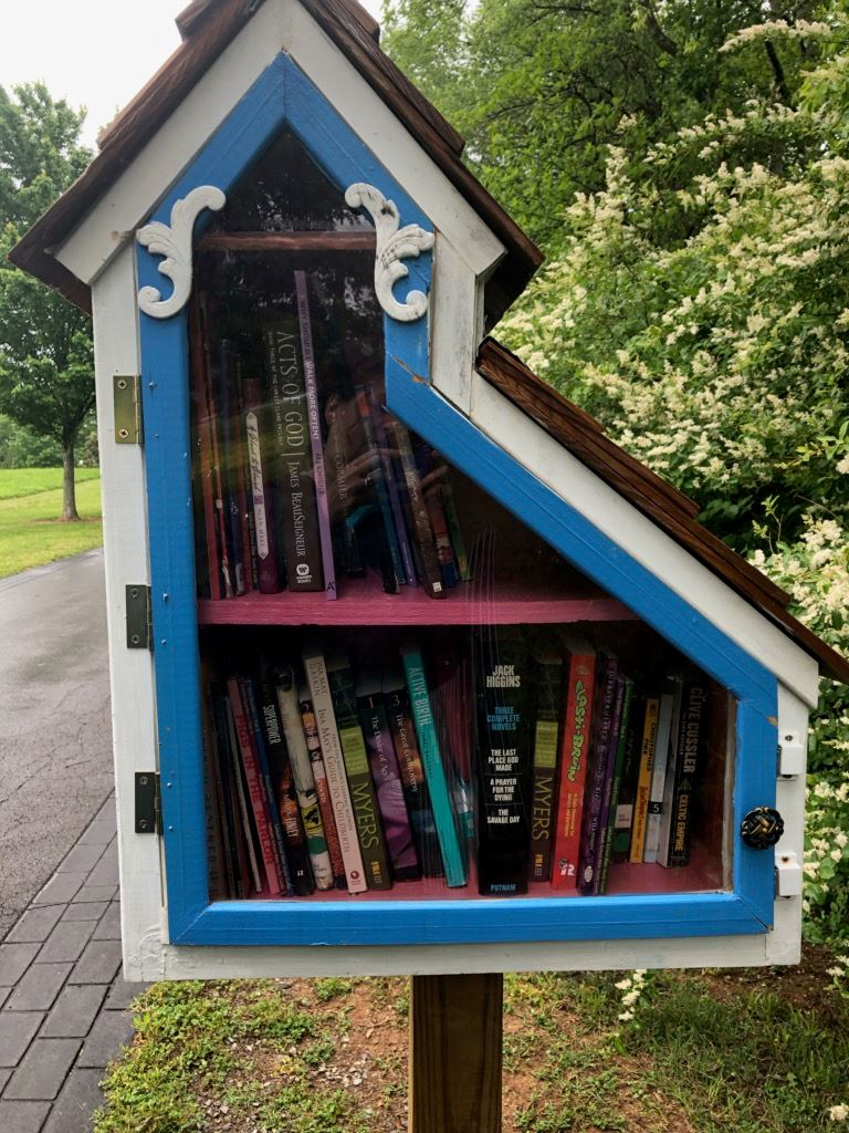 Front of Little Library painted by Murfreesboro student