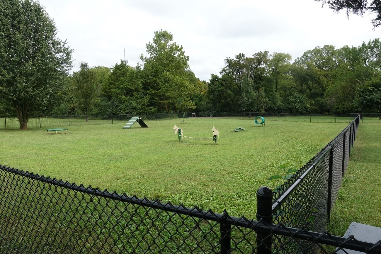 Black chain link fence bordering open lawn area with dog agility equipment in the distance.