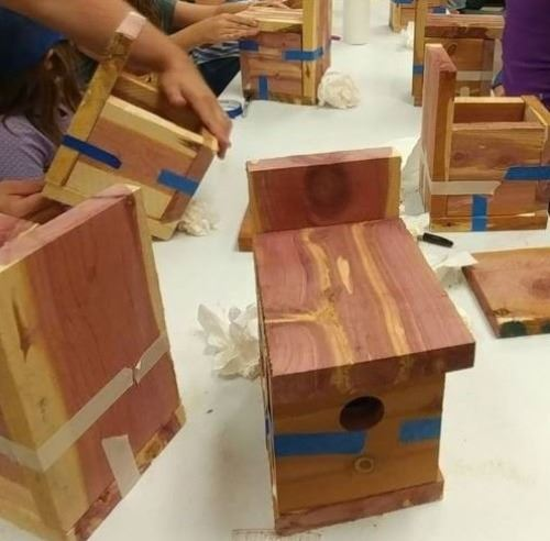 Bluebird boxes, Outdoor Murfreesboro